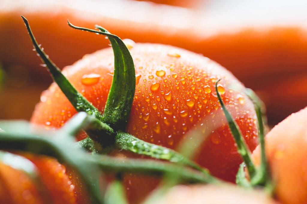 wet-tomato-close-up-picjumbo-com